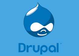 Best and Cheap Drupal Hosting Provider Offering Quality Service & Satisfying Support