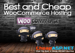 Best and Cheap WooCommerce Hosting With Helpful Features & High Performance