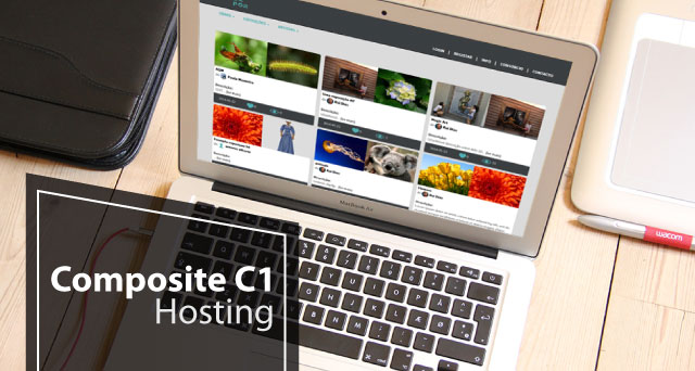 Best and Cheap Composite C1 Hosting