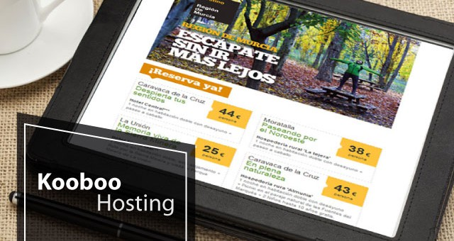 Best and Cheap European Kooboo CMS 3.0 Hosting