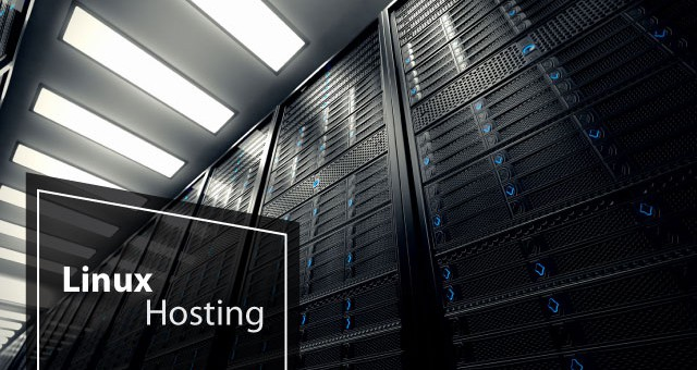 Best and Cheap Linux Shared Hosting Solutions That Are Reliable & Fast