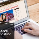 Best and Cheap nopCommerce 3.60 Hosting